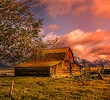 Mormon Row Barn, Grand Tetons, Wyoming. by LudaNayvelt