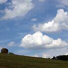 Make Hay While the Sun Shines.... by Lynn Gedeon