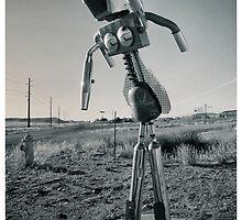 Robot Snapshots by Bob Larson