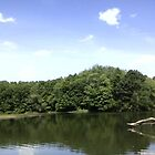 Lake  by jesusmyjoy
