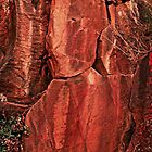 A very colorful rock art panel in Oregon by Dave Sandersfeld