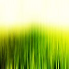 Green Field by Friederike Alexander