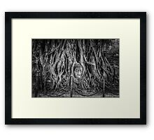 Entwined Beauty Framed Print