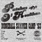 Dodgeball Summer Camp by dgoring