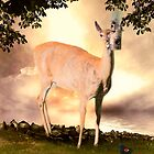 Summer&#x27;s Dawn (White Tail Deer and Red Wing Black Bird) by Yannik Hay