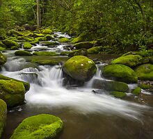 Smoky Mountains Paradise - Great Smoky Mountains Gatlinburg TN by Dave Allen