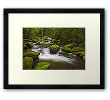 Smoky Mountains Paradise - Great Smoky Mountains Gatlinburg TN Framed Print