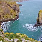 Half of Stack Rocks, Castlemartin, Pembrokeshire by Paula J James