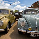 VW 9784 by Steve Woods
