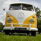VW 9828 by Steve Woods