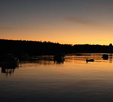 Sunset in Maine by jasmith162
