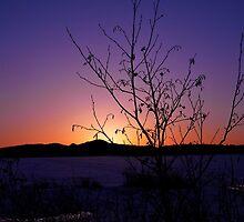 Jackman Sunset by jasmith162