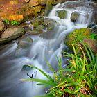 Even Flow 5.0 by Yhun Suarez