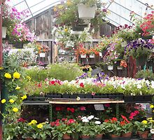 Farm and Flower Market Greenhouse by SheilaBailey