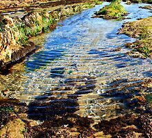 Tide Pool Ripples by DreamerByDesign