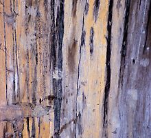 Wood Grain Stains 6 by Scott  Cook