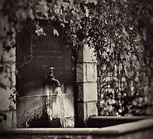 The Secret Garden.... by Trish Woodford