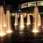 Night Fountains at Niagra Falls by DavidONeill