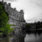 Warwick Castle by Mark Johnson