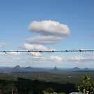 The Glass House Mountains by aussiebushstick