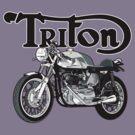 Triton by Steve Harvey
