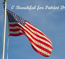 American Flag Patriot Dream  by ValeriesGallery