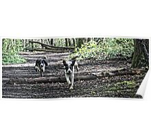 Benson chasing Jess in woods Poster