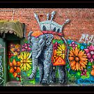Flowerful Elephant by Chris Mitchell