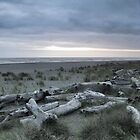 Boneyard Beach by LunaticGnome