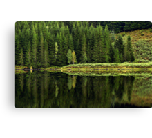 Reflections on Nature Canvas Print