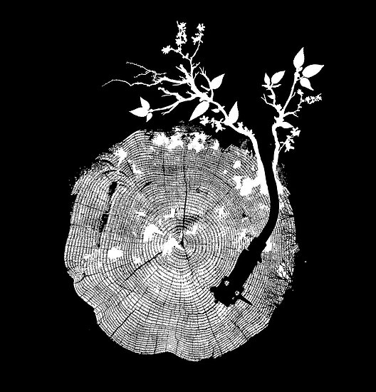 Nature's Choir (mono) by Budi Satria Kwan