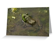 Frog April Greeting Card