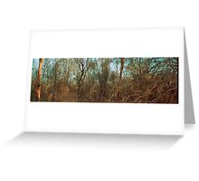 After the bushfire, Gindalbie - Box Brownie & 35mm film Greeting Card