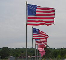 Gloucester, Mass - Flags by MaryinMaine