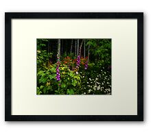 Life In The Woods Framed Print