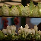 Cabbages & Onions at the Rialto Market by beardyrob