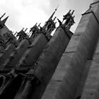 Notre Dame Cathedral by marv42