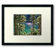 Hall Lake Framed Print