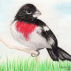 Bird in the Grass by Karen  Securius