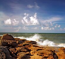 Washington Rocks #8. Flagler County. by chris kusik
