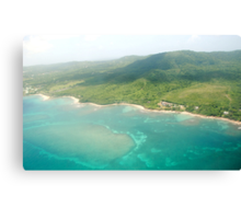 Island Flight Canvas Print