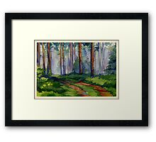 Evergreen forest Framed Print