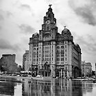 Liver Building by adrianpym