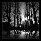 Black Silhouette by John Dalkin