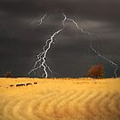 Summer Storm - Mine Road, Kanmantoo, South Australia by Mark Richards
