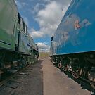  Blue Peter and Mallard by Mike-G