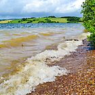 Waves at Llandegfedd Reservoir by Paula J James