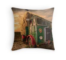 Summers Harvest Throw Pillow
