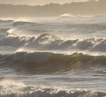 sunlight through the surf  by gaylene