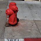 missk8art's Fire Hydrants by missk8